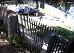 Cane abbandonato: ecco il video incastra i proprietari