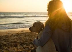 Un cane ti cambia la vita
