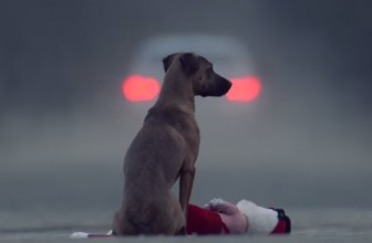 Abbandoneresti tuo figlio? Video contro l'abbandono dei cani