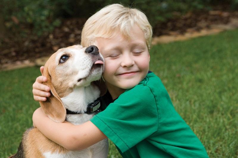 8 cose stupide che i bambini fanno con i cani