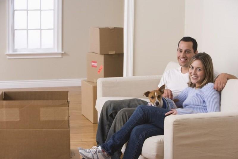 5 consigli per affrontare un trasloco con il cane