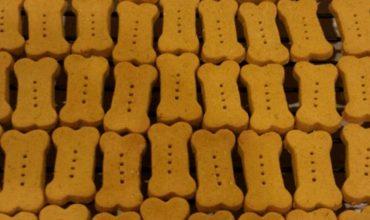 Biscottini alla Zucca e Burro d'Arachidi