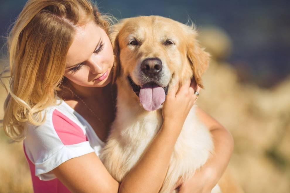 cane-abbraccio