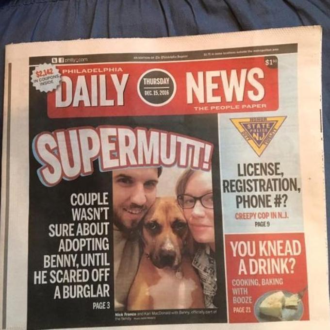 cane-giornale