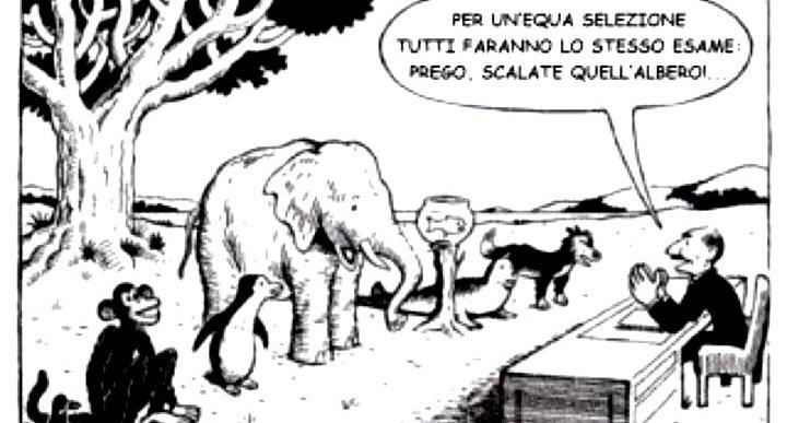 scuola-animali
