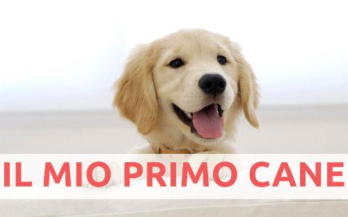 il-mio-primo-cane
