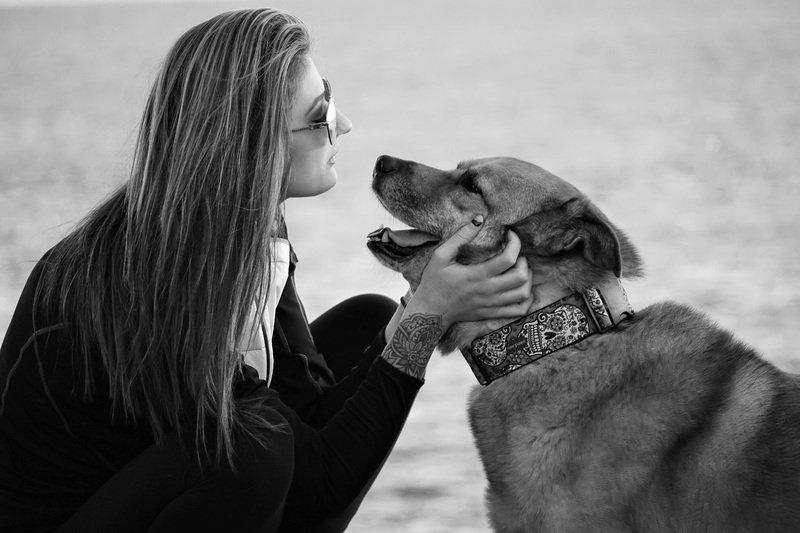 studio-cani-capiscono-sorriso