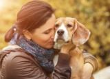 23 indizi da cui si capisce che hai un cane