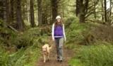 Passeggiate in montagna con il cane: Il kit di prima necessità