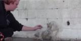 Video: la reazione del cane appena salvato ci ha fatto commuovere…